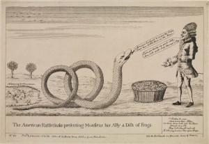 American Rattlesnake presenting